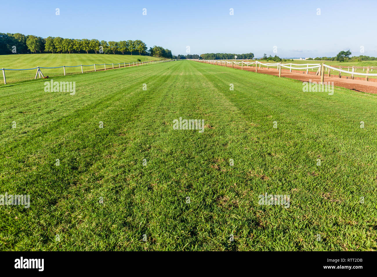Horse race grass training  track railing fence blue sky equestrian countryside landscape. - Stock Image