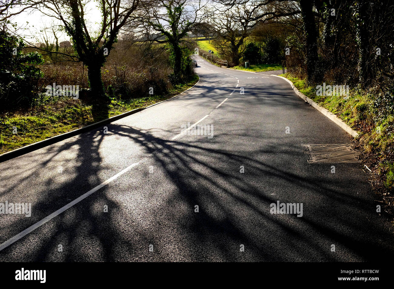 Newly laid road surface, rural, modern, technology, surface, surfaced, white, lines, tree, lined, shadow, - Stock Image