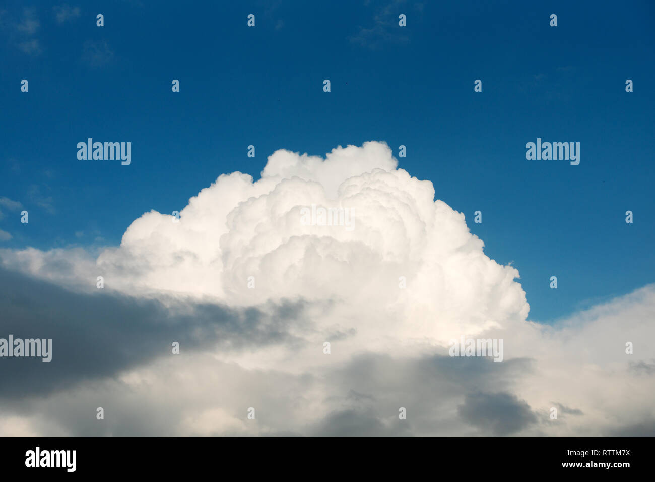 Big white cloud and blue sky background, copy space. Sky and clouds. - Stock Image