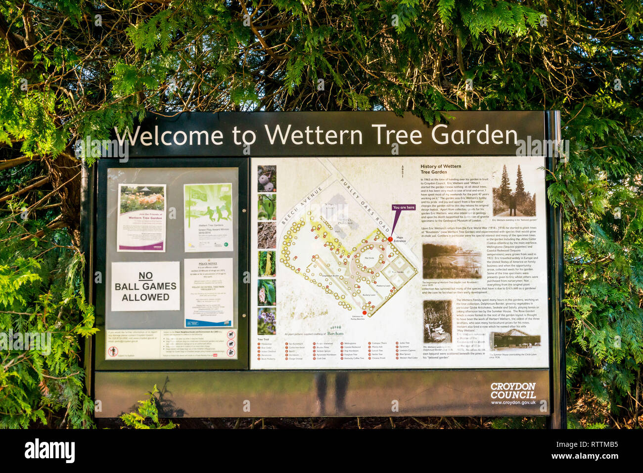 Croydon, United Kingdom - February 23, 2019:  Wettern Tree Garden in Sanderstead, Purley Oaks Road. A unique collection of trees and shrubs  establish Stock Photo