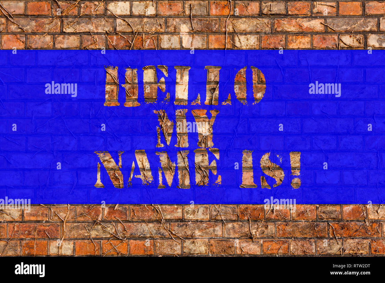 Writing note showing hello my name is business photo showcasing meeting someone new introduction interview presentation brick wall art like graffiti