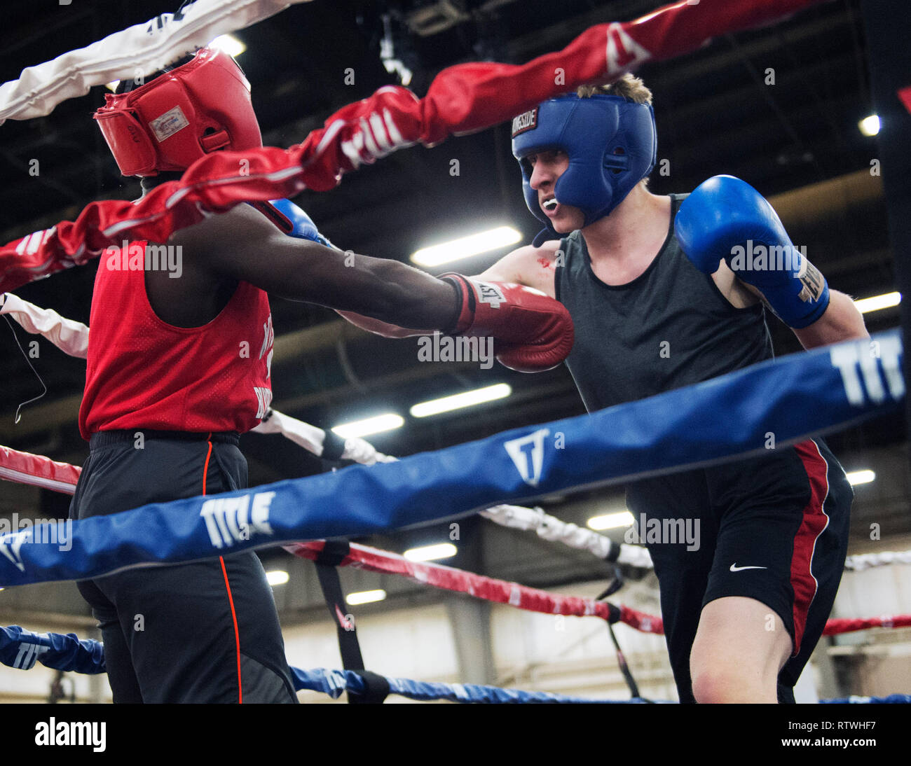 March 2, 2019: Matt Cikowski of Illinois (right) hits Jovaughn Bowen of Wisconsin (left) with a right hand in the Amateur Boxing competition  at the Arnold Sports Festival in Columbus, Ohio, USA. Brent Clark/Alamy Live News Stock Photo