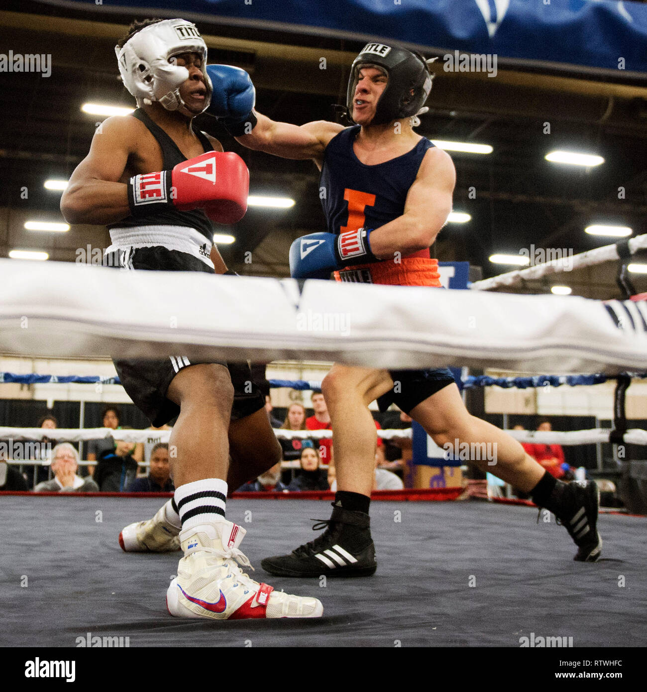March 2, 2019: Danny Ayala of Illinois (right) connects with a right hand against Orin Pearce of Ohio State (left) in the Amateur Boxing competition at the Arnold Sports Festival in Columbus, Ohio, USA. Brent Clark/Alamy Live News Stock Photo