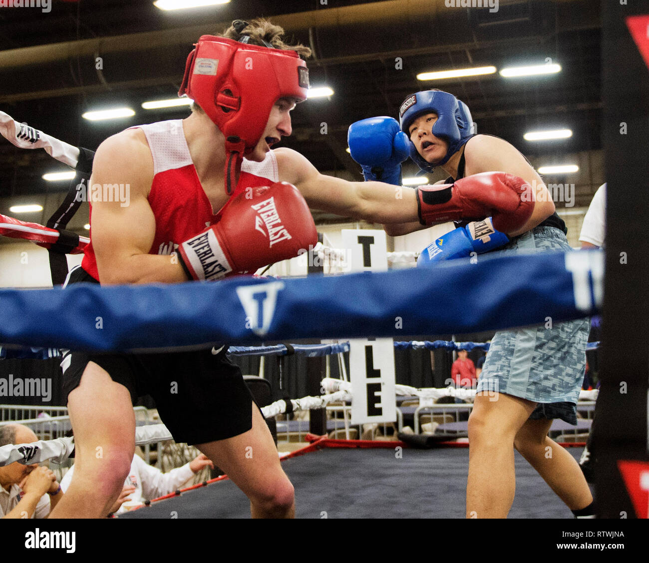 March 2, 2019: Daniel Choi of Illinois fights in the corner with Cade Allox of Wisconsin in the Amateur Boxing competition at the Arnold Sports Festival in Columbus, Ohio, USA. Brent Clark/Alamy Live News Stock Photo