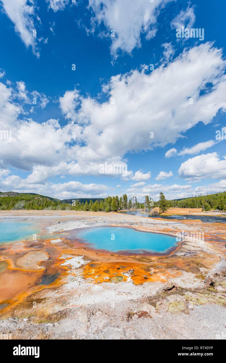 Black Opal Pool, Hot Spring, Yellow Algae and Mineral Deposits, Biscuit Basin, Yellowstone National Park, Wyoming, USA Stock Photo