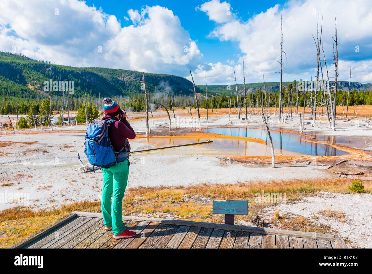 Young woman photographed, dead trees at Opalescent Pool with mineral deposits, Black Sand Basin, Yellowstone National Park - Stock Image