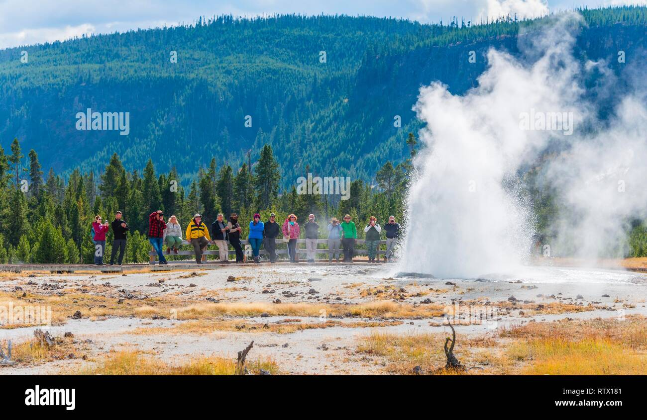 Tourists watching the eruption of Jewel Geyser, Black Sand Basin and Biscuit Basin, Yellowstone National Park, Wyoming, USA - Stock Image