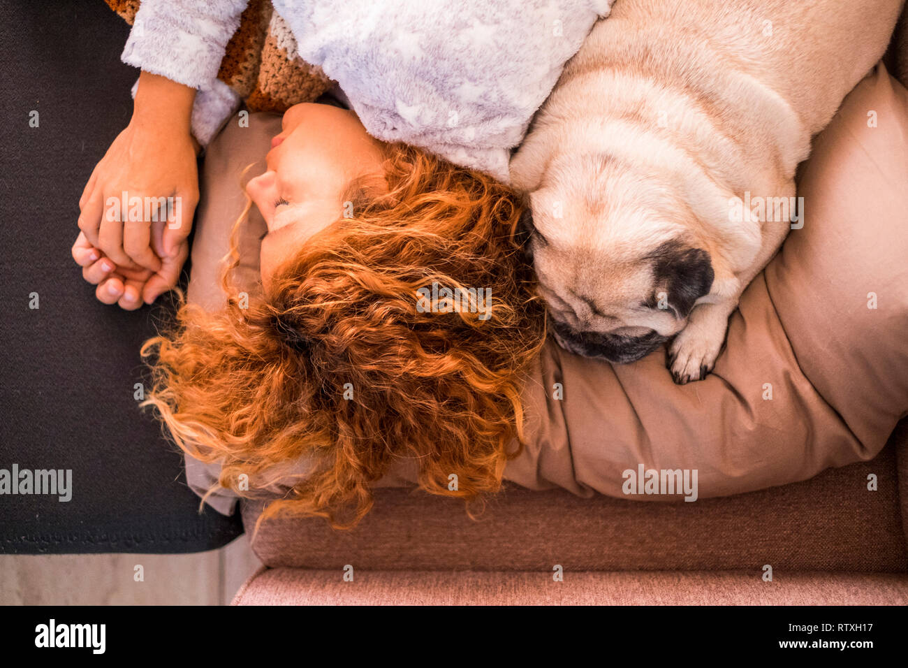Love and protection and best friends forever concept with beautiful caucasian woman sleeping near her lovely puppy dog pug - friendship from top verti - Stock Image