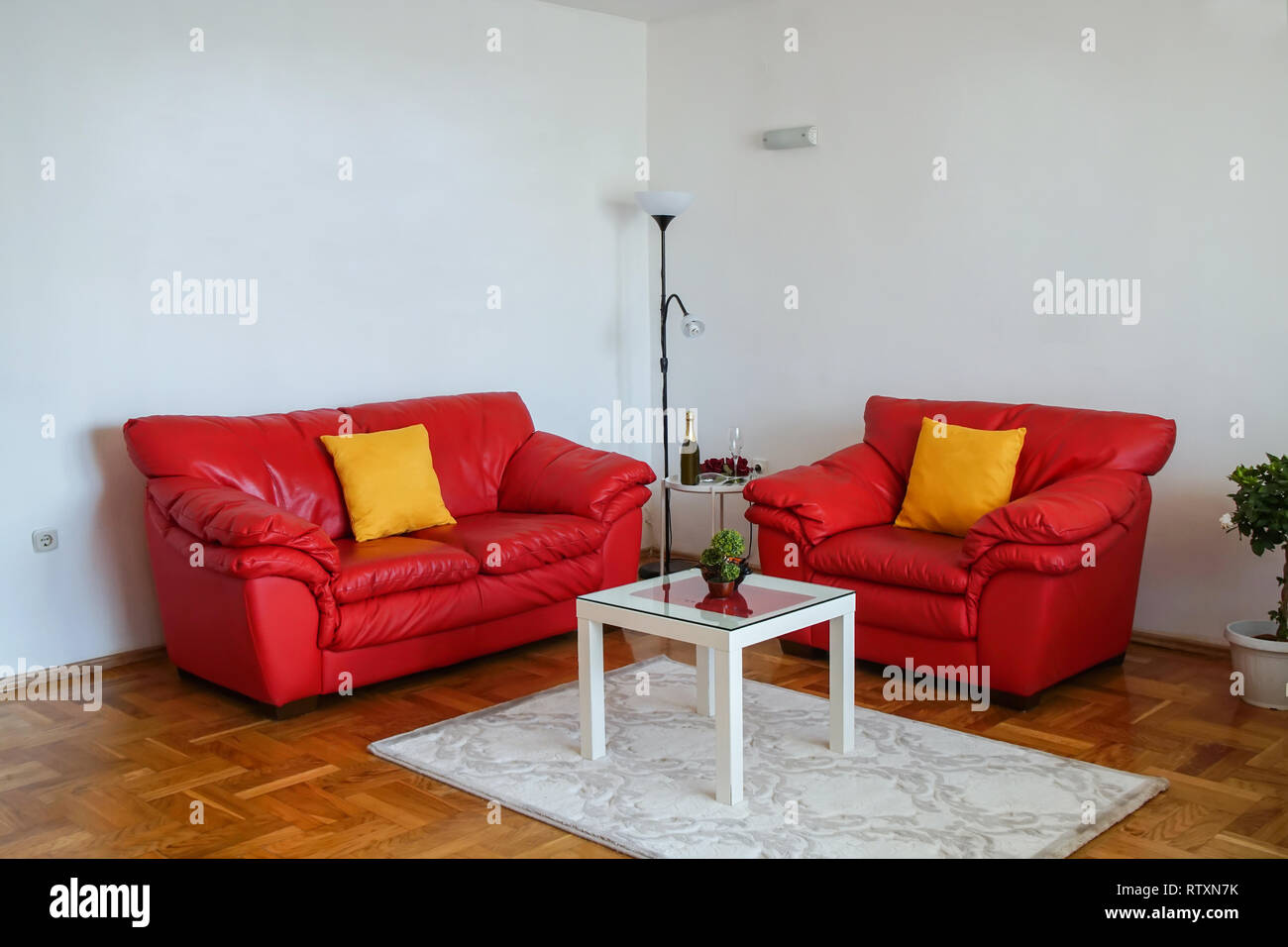 Outstanding Interior Shot Of A Modern Living Room Spacious Apartment Onthecornerstone Fun Painted Chair Ideas Images Onthecornerstoneorg