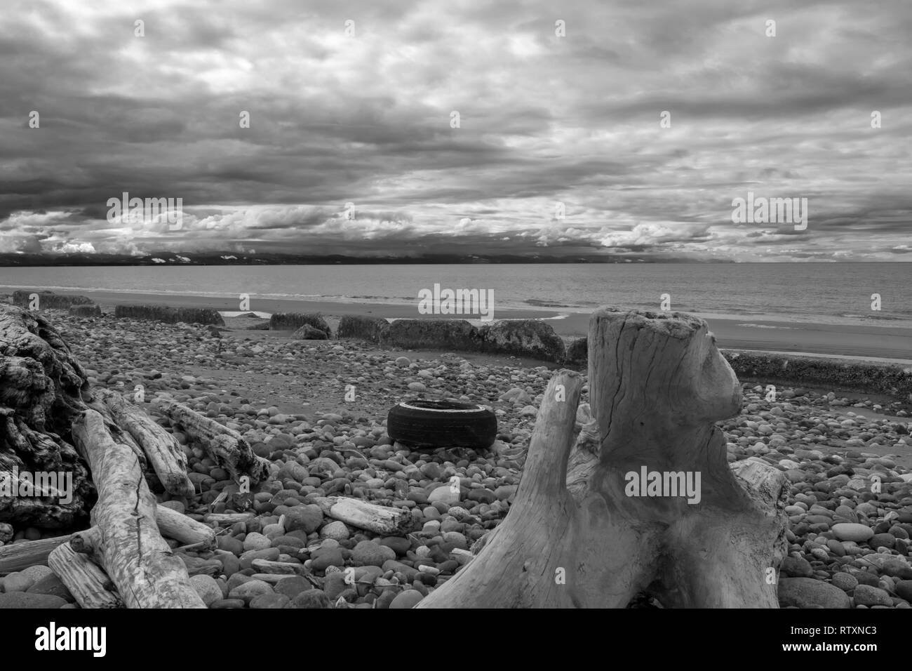 An Old Tire on West Beach, Whidbey Island - Stock Image