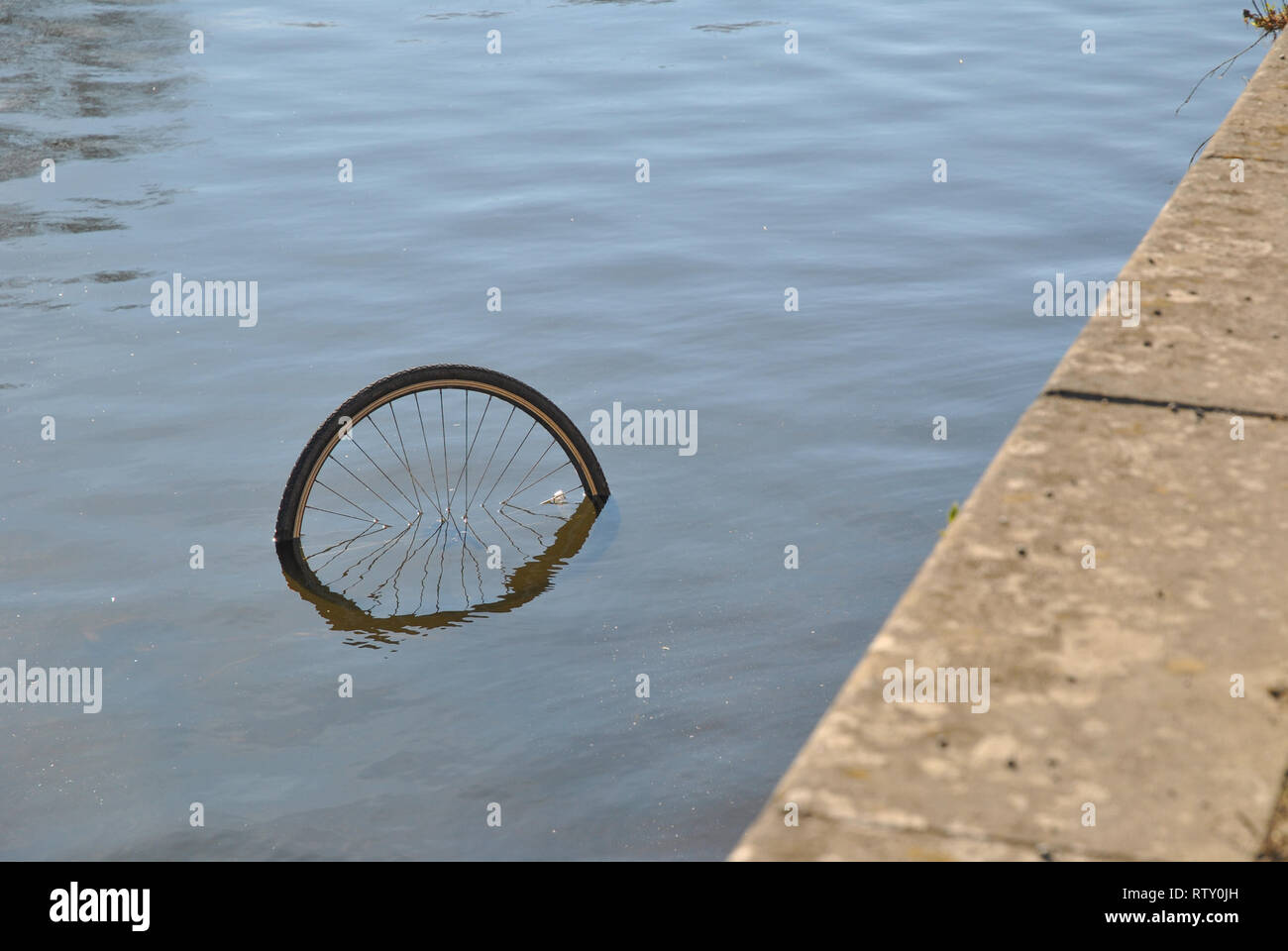 The wheel of a bicycle dumped in the river is  just visible above the waterline - Stock Image