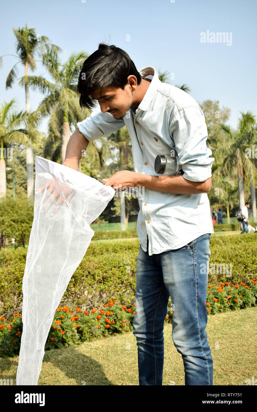 Young man entomologist collecting insects using an insect net or swiping net for his insect specimen collection during a bright summer Stock Photo