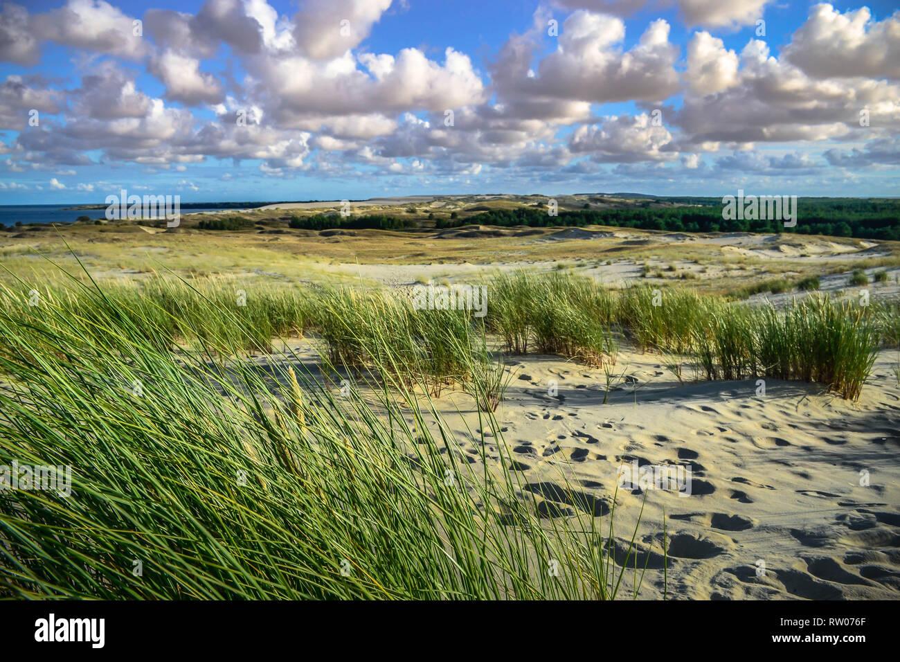 Sand dunes on the Baltic sea coastline in Nida. Lithuania Stock Photo