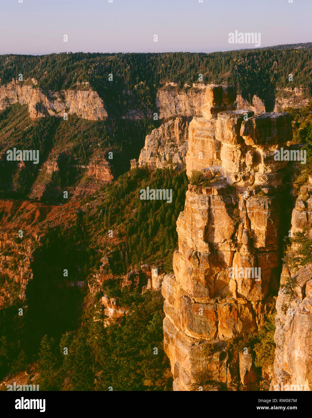 USA, Arizona, Grand Canyon National Park, Sunrise light on Kaibab Limestone with Walhalla Plateau in the distance, from Point Imperial. - Stock Image