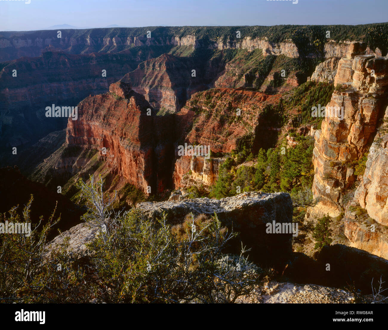 USA, Arizona, Grand Canyon National Park, North Rim, View south from Point Imperial towards canyon depths and flat topped Walhalla Plateau. - Stock Image
