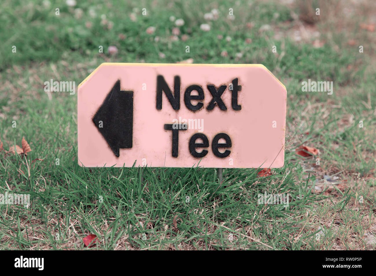 Plastic sign indicating where the next tee off is on a golf course - Stock Image