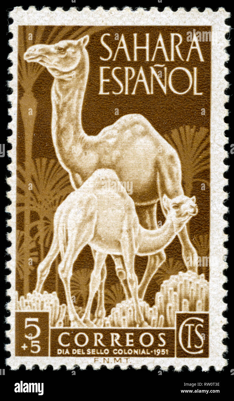 Postage stamp from the former Spanish Sahara issued in 1951 - Stock Image