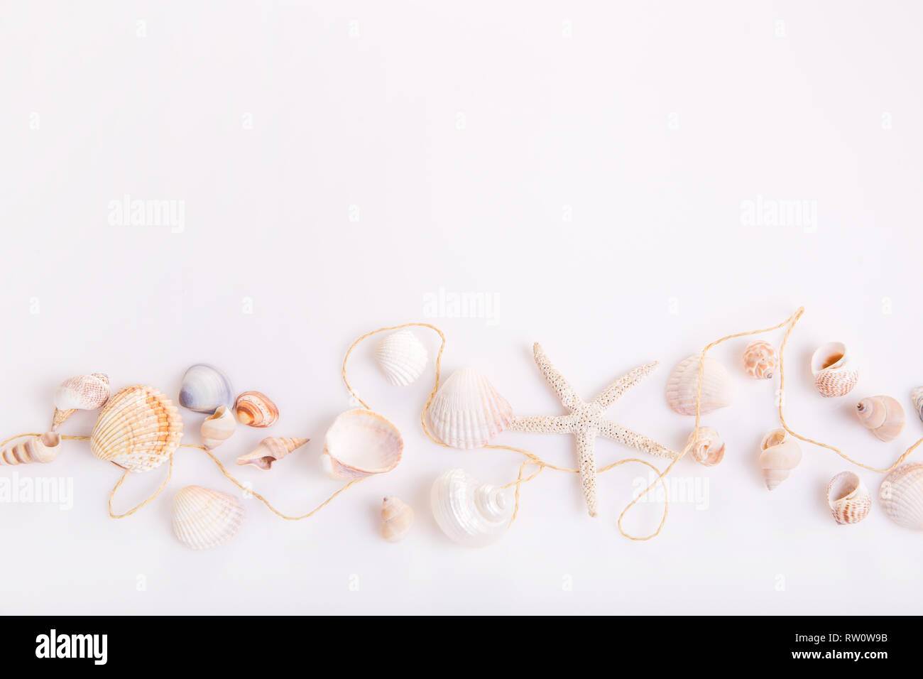 Composition of exotic seashells, oyster, starfish on white background. Tropical summer vacation or Birthday, Wedding Day concept. - Stock Image