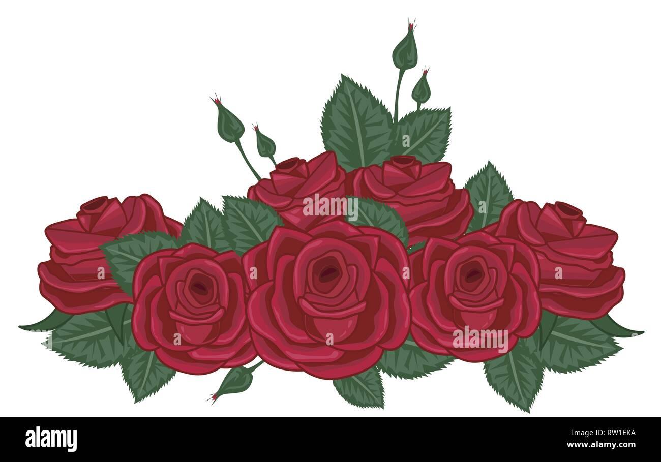 red roses vector illustration on white - Stock Vector