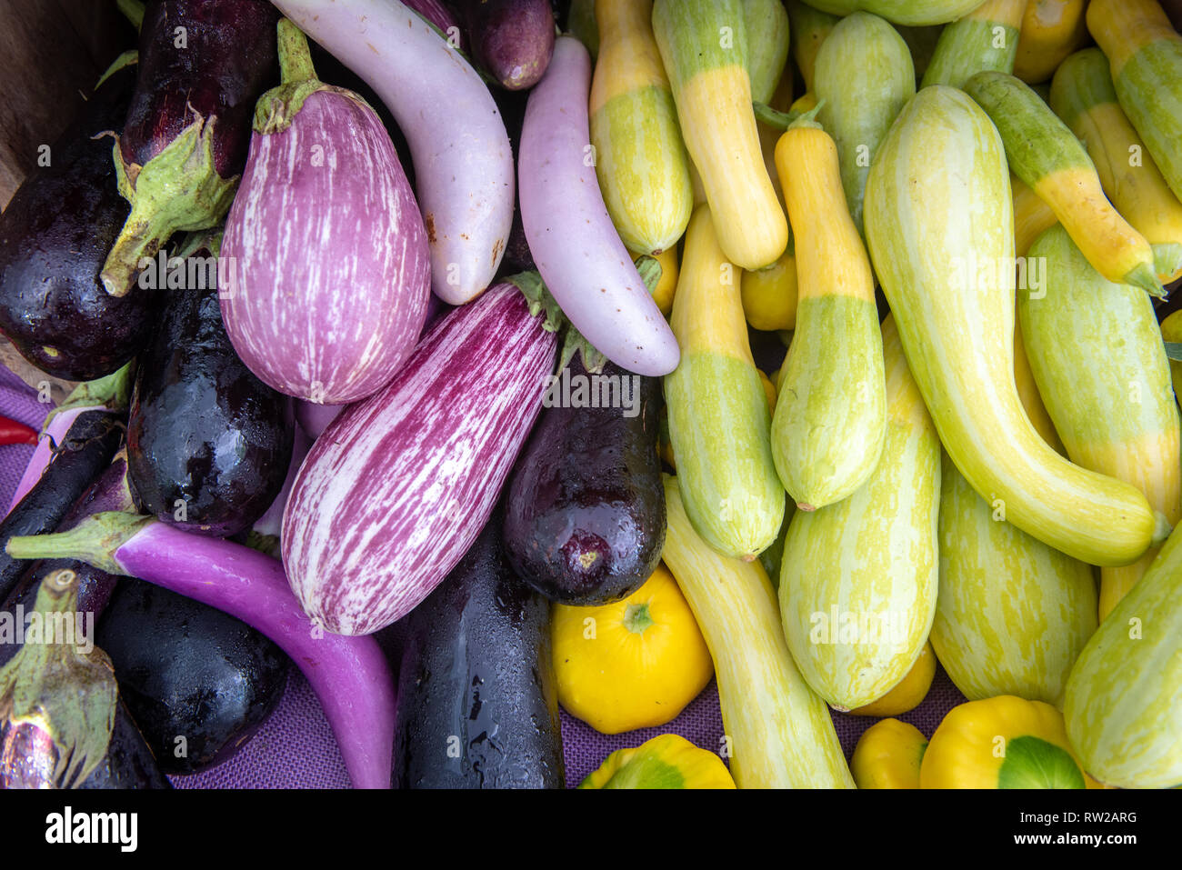 High angle view of eggplants (Solanum melongena) and a variety of gourds on display for sale at farmers' market, Rehoboth Beach, Delaware Stock Photo