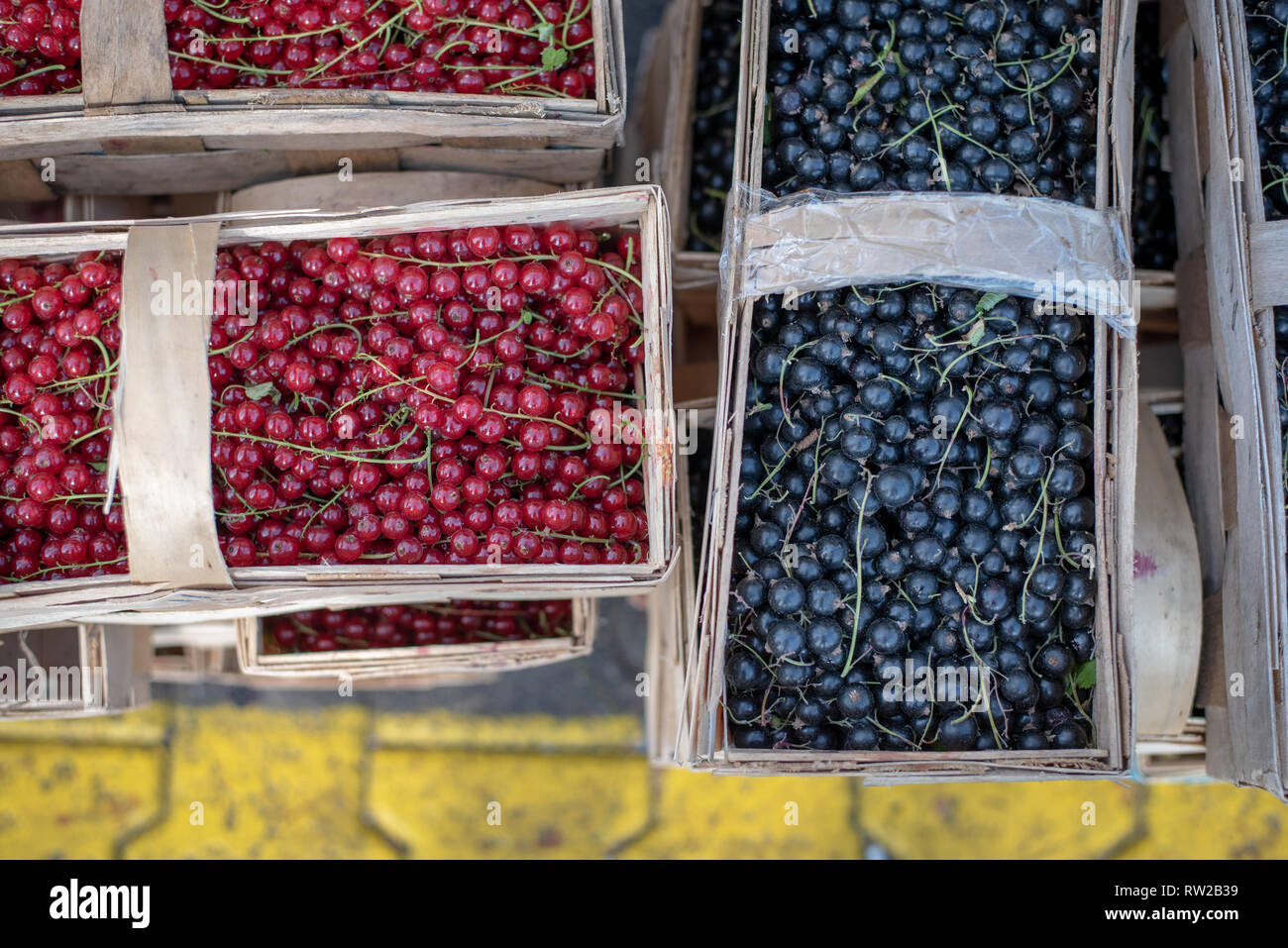 Overhead view of wooden pales full of cranberries (Vaccinium oxycoccos) and bilberries (Vaccinium myrtillus L.) at the Bronisze Wholesale Market - one Stock Photo