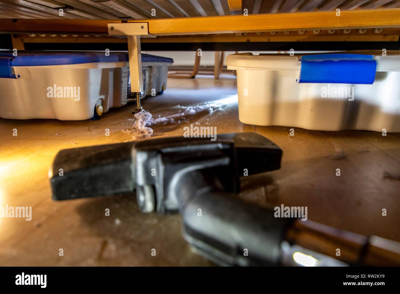 Hausstaub, Wollmäuse, Staubknäule, sammeln sich unter einem Bett, Staubsauger, Stock Photo