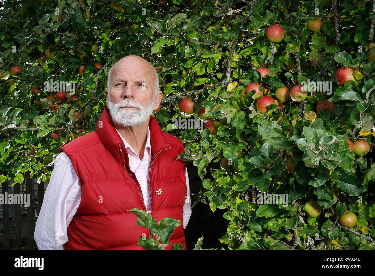 Charles Martell, the renown Gloucestershire apple expert, cheesemaker, distiller, and High Sheriff of Gloucestershire, by an apple tree of Newton Wond - Stock Image