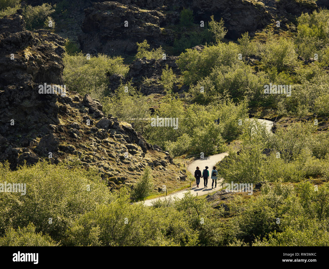 Dimmuborgir -area of unusually shaped lava fields, cave and volcanic rock formations, east of Myvatn, Iceland. - Stock Image