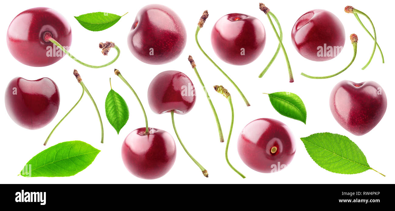 Isolated cherries collection. Sweet cherry fruits, stems and leaves isolated on white background with clipping path - Stock Image