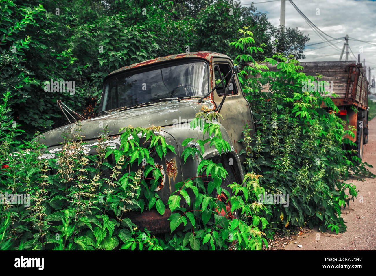 Junk yard vehicles showing old rusted truck in overgrown weedy area - Stock Image