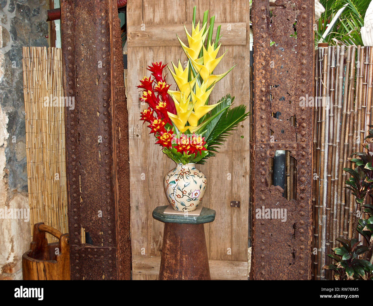 Lobster-claws blooms arrangement - Stock Image