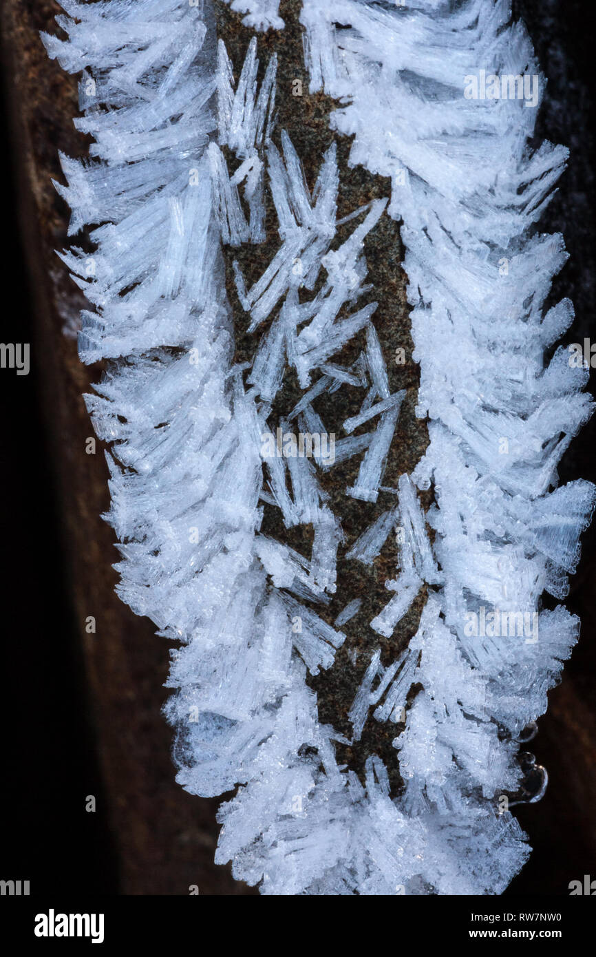 Hoarfrost formations on basalt - Stock Image