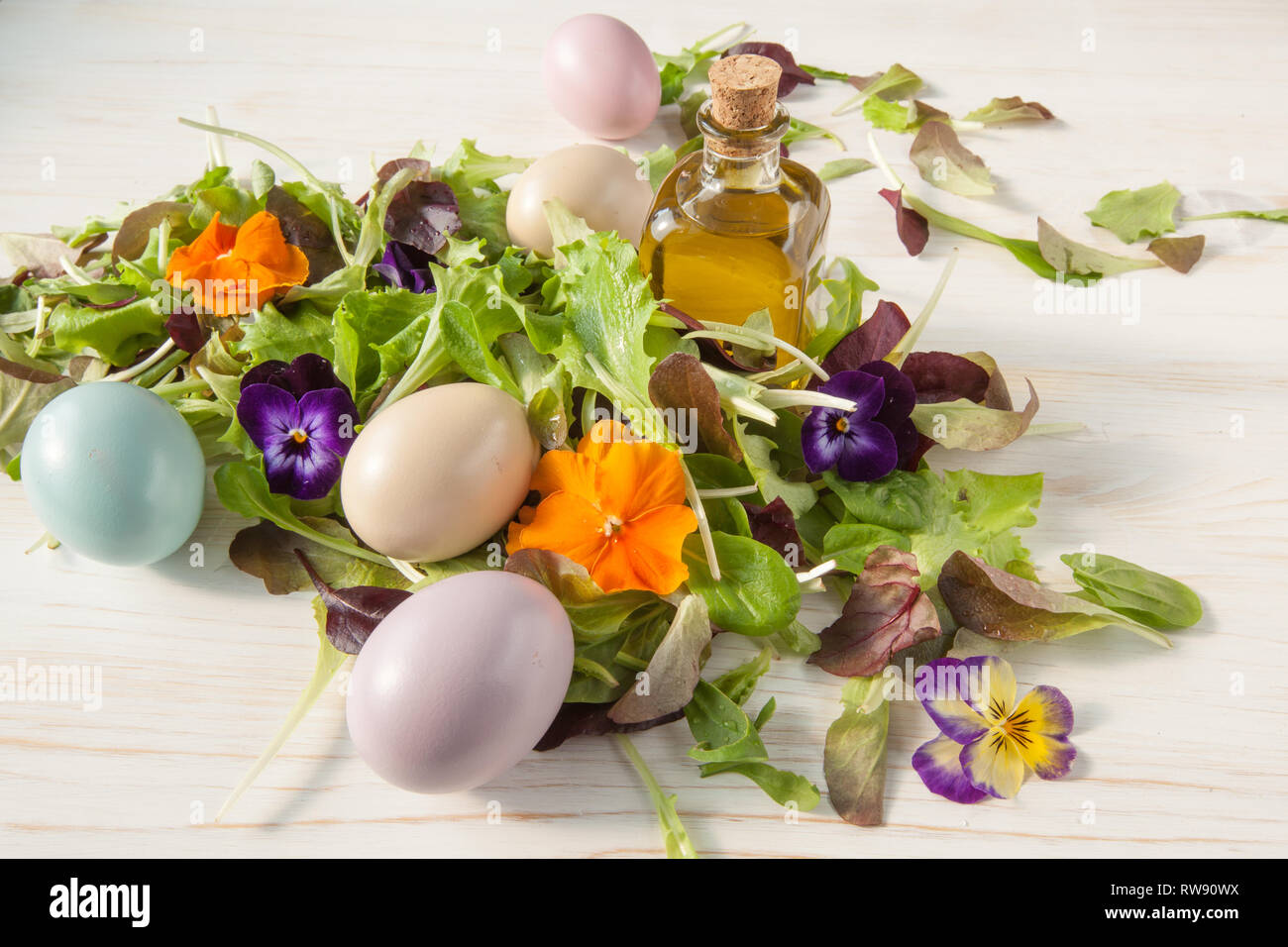 Lettuce and flower salad on woody white background spring, easter - Stock Image