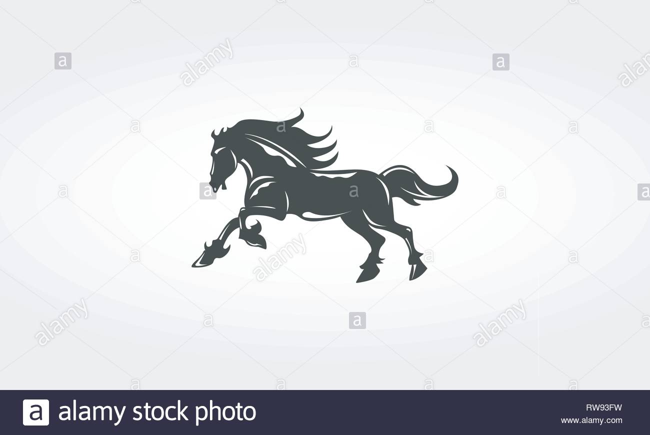Black Horse Stallion - Stock Image