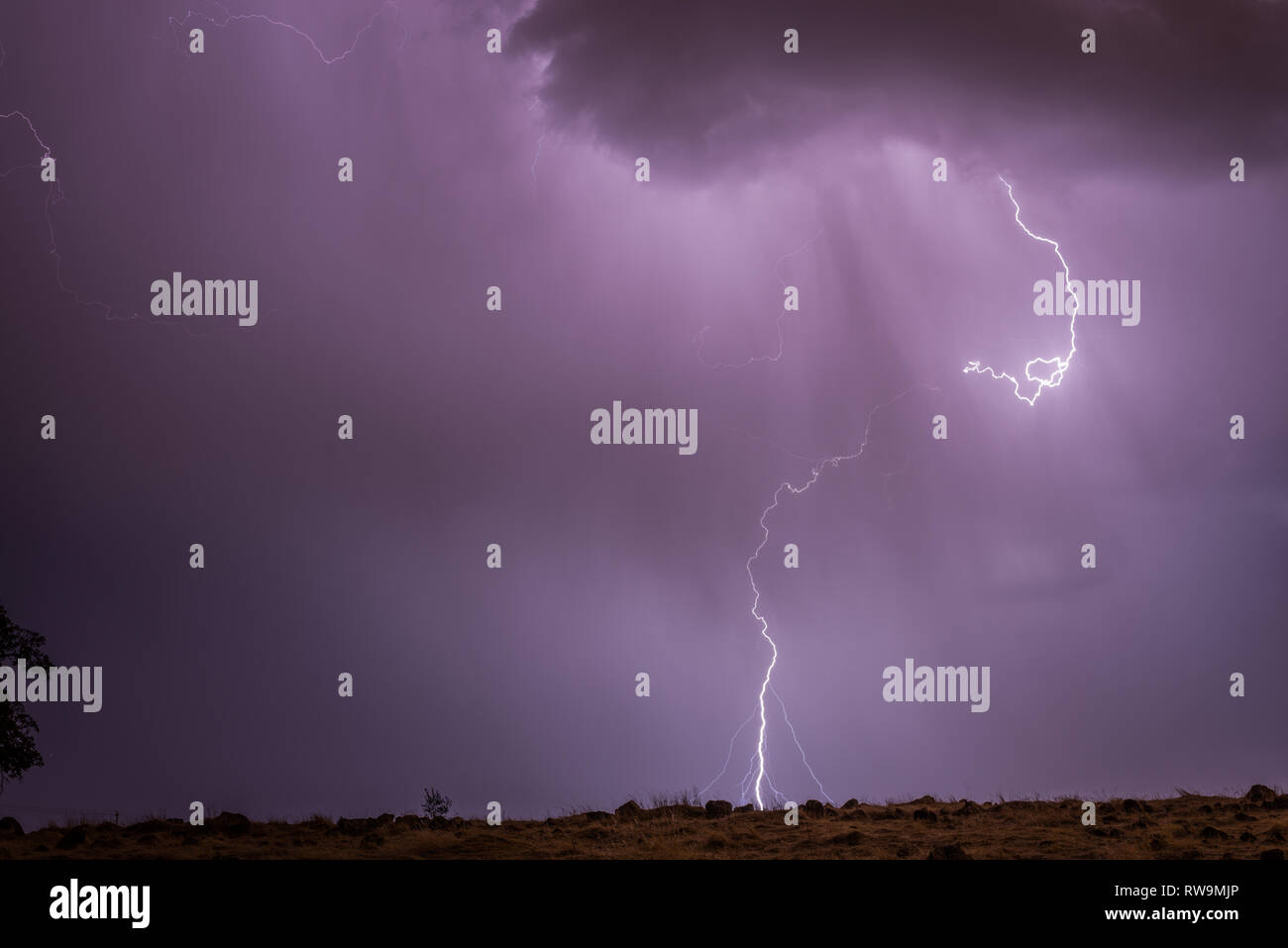 A close-range cloud-to-ground lightning strike in Placer County, northern California, late on a summer night. - Stock Image
