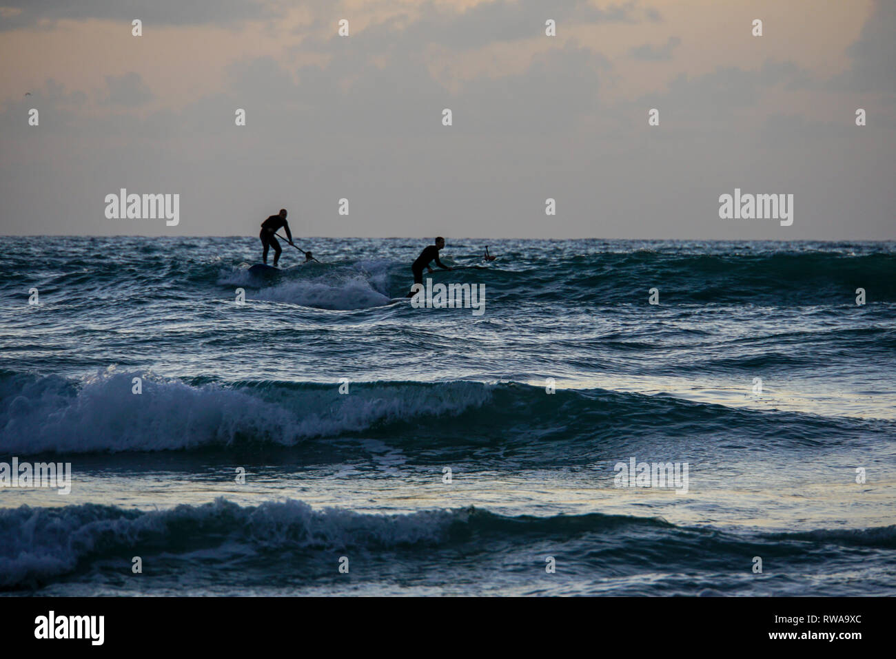 Silhouette Of Sup Surfers In The Mediterranean Sea