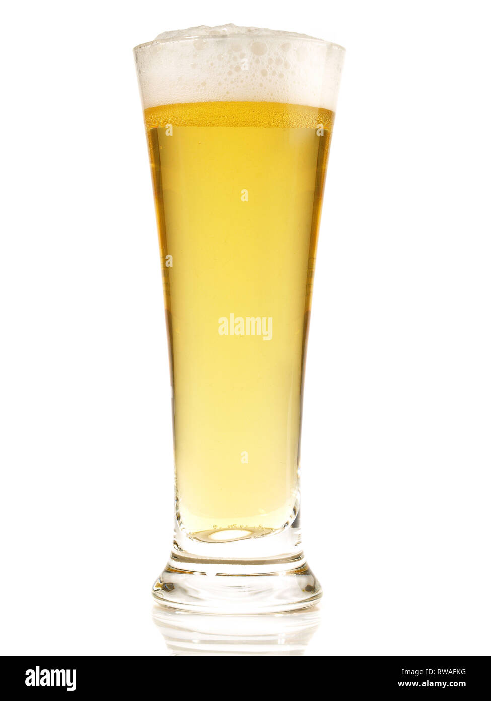 Pils Beer on white Background - Stock Image