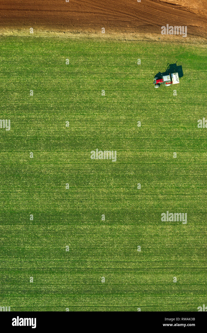 Agricultural tractor is fertlizing wheat crop field with NPK fertilizers, aerial view from drone pov - Stock Image