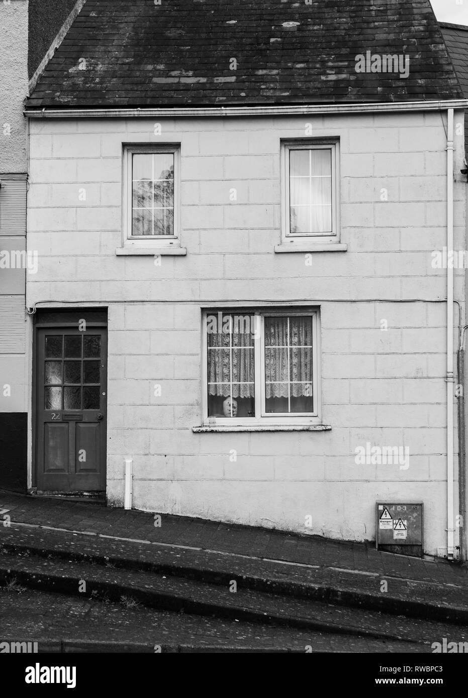 houses on steep hill bandon west cork ireland - Stock Image