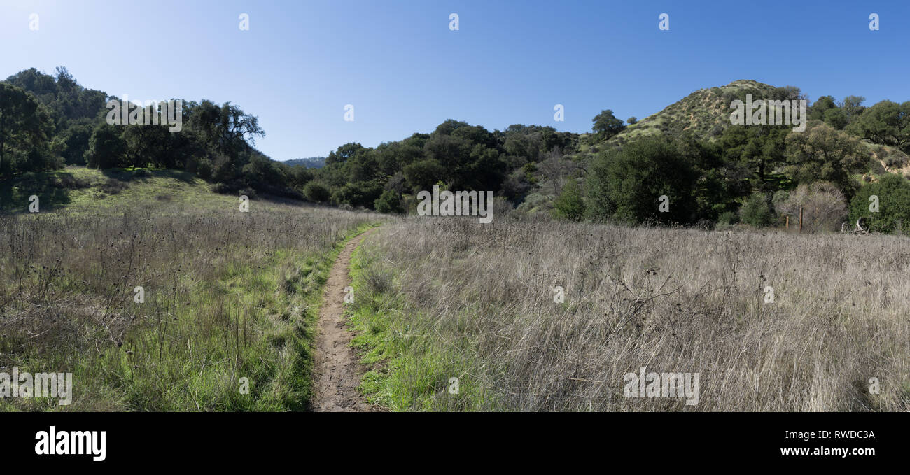 Dirt trail bends through a grass meadow in the hills of southern California. - Stock Image