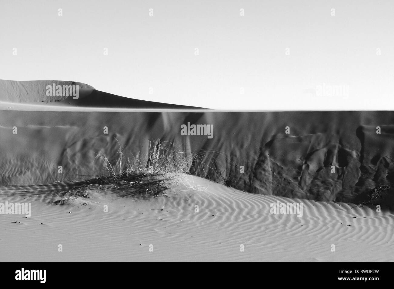 Visible interesting textures and patterns on sand surface dunes shape shadows and lights on sand wall black and white