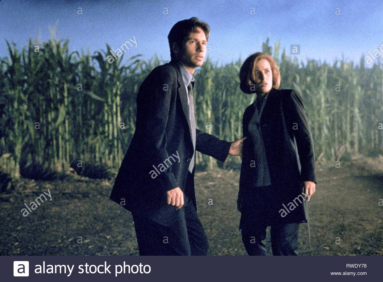 DUCHOVNY,ANDERSON, THE X FILES, 1998 - Stock Image