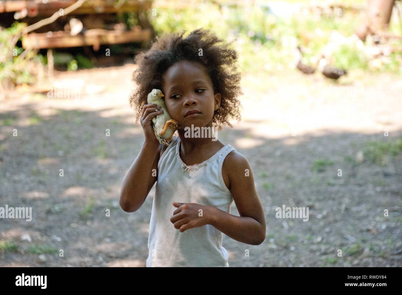 QUVENZHANE WALLIS, BEASTS OF THE SOUTHERN WILD, 2012 - Stock Image