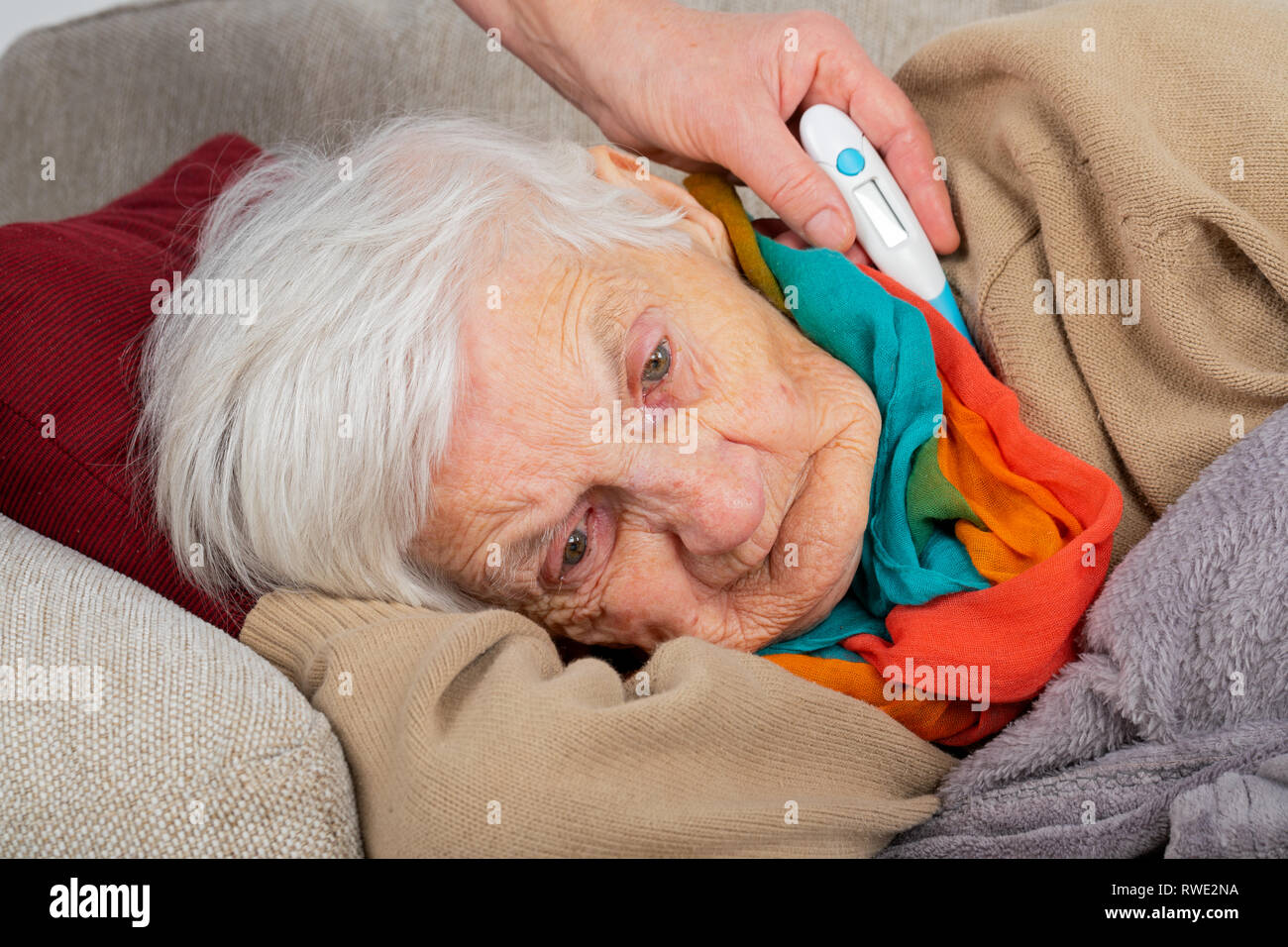 Close up picture senior woman being sick, carer holding digital thermometer next to her head - fever - Stock Image
