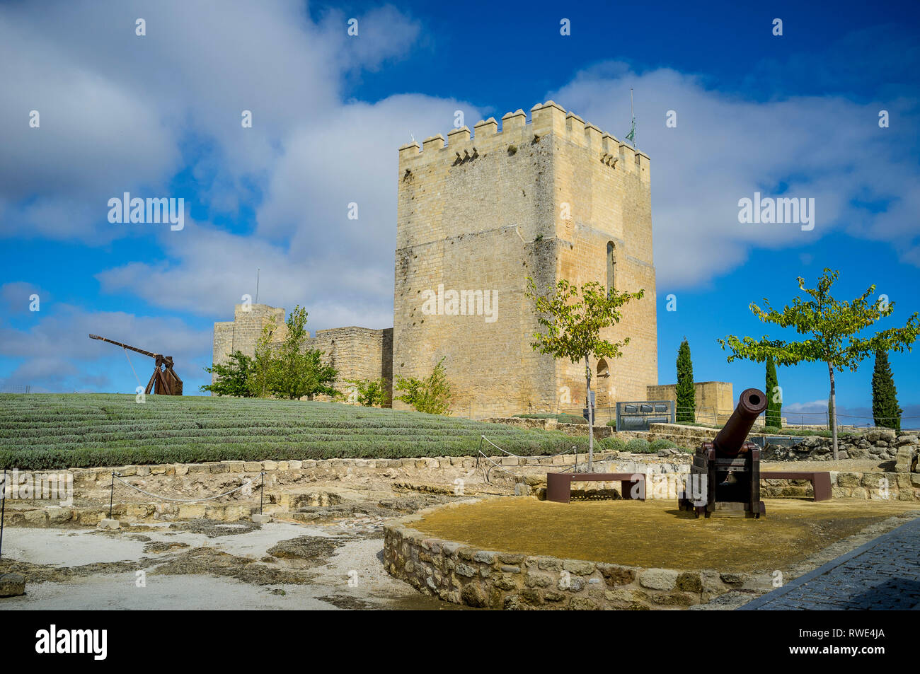 Inside Alcala la Real Castle, showing the Alcazaba Tower, lavendar garden, trebuchet and cannon defensive weapons, Jaen Province, Analusia, Spain. - Stock Image