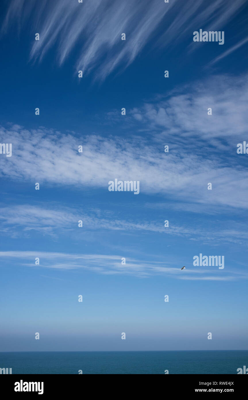 Cirrus and cirrocumulus clouds in a blue sky over South Devon in Spring, UK - Stock Image