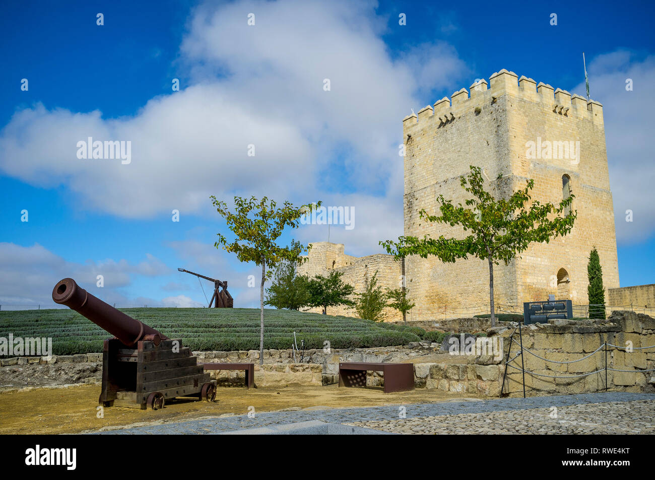 Inside Alcala la Real Castle  showing the Alcazaba tower, lavendar garden and trebuchet + cannon defensive weapons, Jaen Province, Andalusia, Spain. - Stock Image