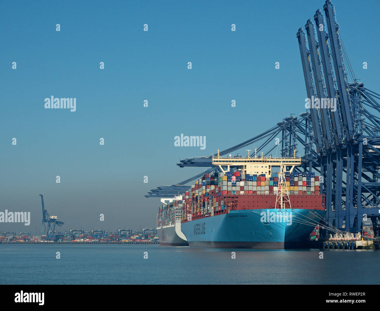 From Landguard point, Mega giant container ships berthed alongside at the Port Of Felixstowe River Orwell Suffolk England, United Kingdom - Stock Image