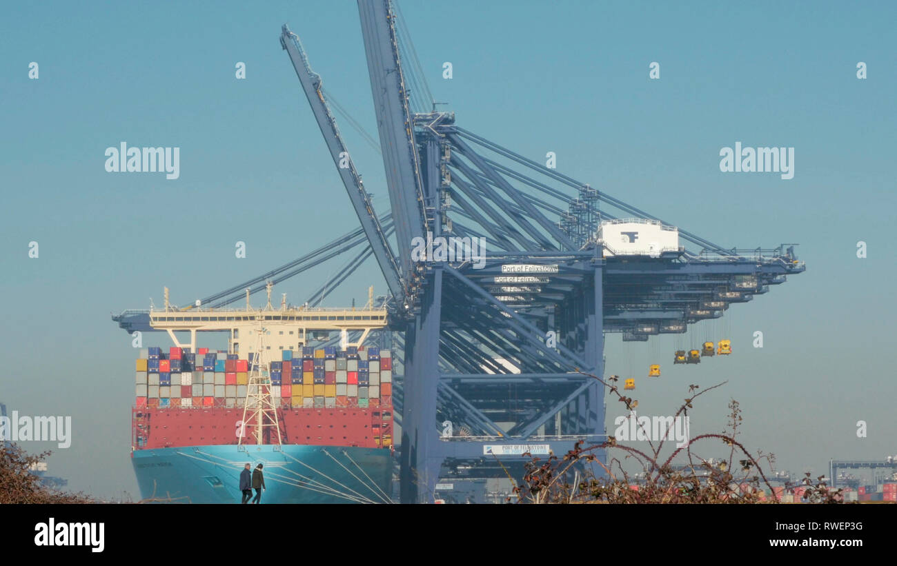 From Landguard point a couple walking with a mega giant container ship berthed alongside at the Port of Felixstowe River Orwell Suffolk England, Unite - Stock Image
