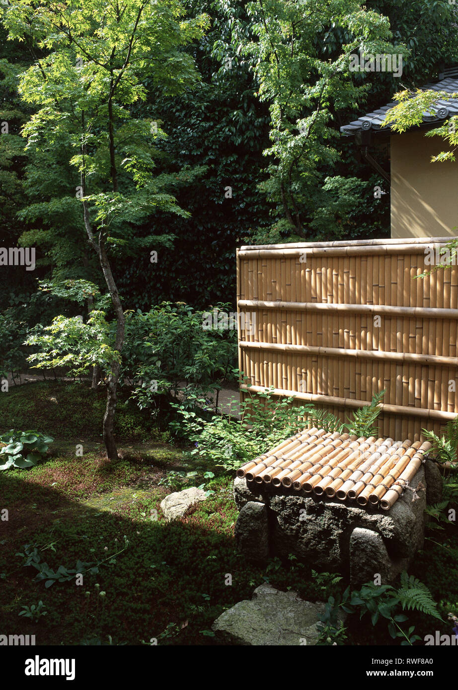Japanese Bamboo Wall In Outdoor Garden With Trees And Plants Stock